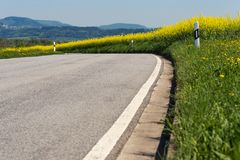 Free Road In Springtime Landscape Royalty Free Stock Images - 115436469