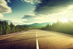 Free Road In Summer Forest Stock Photos - 39280983