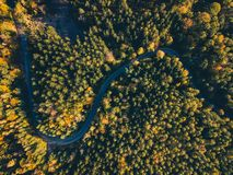 Free Road In The Autumn Forest Aerial View Royalty Free Stock Photography - 130975377