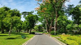 Road In The Park On A Bright Day. Stock Photography