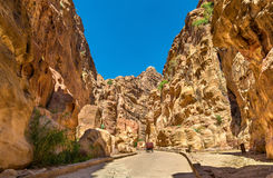 Road inside the Siq Canyon at Petra Royalty Free Stock Photo