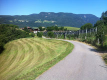 Road in Italian Alps Stock Photos