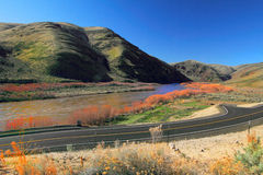 Road by John Day River Royalty Free Stock Photos