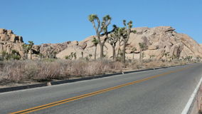 Road in Joshua Tree national park in California stock video footage