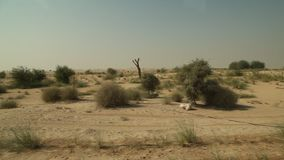 Road journey in desert Dubai stock video