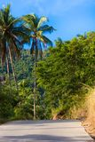 Road in jungle of Samui island, Thailand Royalty Free Stock Image