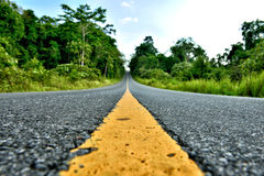 Road in Khao Yai National Park Royalty Free Stock Photo