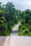 Road at Khao Yai National Park Royalty Free Stock Image