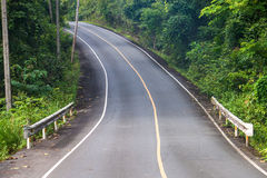 Road at Khao Yai National Park Stock Photography