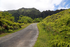 Road and Koolau Mountain Range. Road leading into a tropical area with mountains in background Royalty Free Stock Images