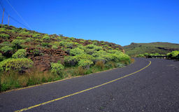 Road in the La Gomera Stock Images