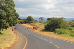 Road between lake Manyara and Ngorongoro, Tanzania Royalty Free Stock Images