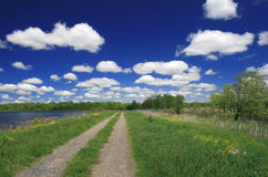 Road, Lake, Meadow Landscape Royalty Free Stock Photos