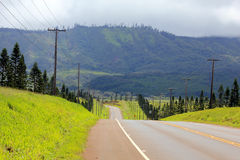 Road on lanai. On a Sunny day Stock Images