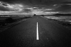 Road and landscape in black and white Royalty Free Stock Image