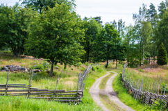 Road in landscape Stock Images