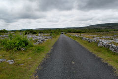 Road in landscape of Ireland Royalty Free Stock Photography