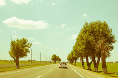 Road landscape under scorching July sun, way to sea, highway with trees.  Stock Images