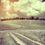 Road lane and green fields Royalty Free Stock Photos