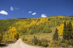 Road leading to Aspen studded moutainside near Rico Colorado. Road leading to Aspen studded moutainside in the fall near Rico Colorado royalty free stock image