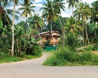 Road leading to big house, surrounded by coconut palm trees and green plant. Stock Image