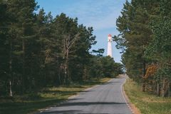 Road leading to lighthouse through pine forest stock photography