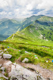 Road leading to the mountain peaks royalty free stock images