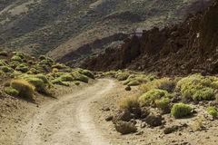 Road leading to mountains. Mountain road to volcano of Teide. Picturesque landscape in Tenerife. Road leading to mountains Stock Photos