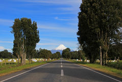 Road leading to Osorno Volcano, Patagonia, Chile. South America Royalty Free Stock Photography