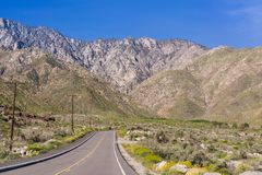 Road leading to the Palm Springs Aerial Tramway, Mount San Jacinto, California royalty free stock images