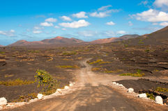 Road leading to volcanic grown vineyard Stock Images