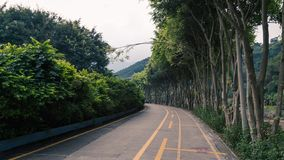 A road that leads on royalty free stock photography