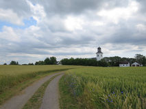 The road leads to the church. A road passes a field of wheat on the way to the village church Stock Photography