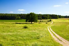 Road leaving in the field Royalty Free Stock Images