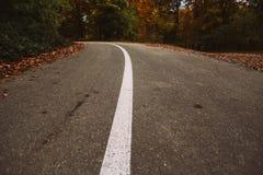 Road line Stock Image