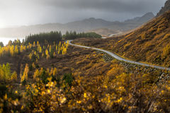 The road line direct in to mountain in Autumn season Royalty Free Stock Photography