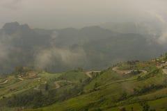 Road line of green mountain Stock Photos
