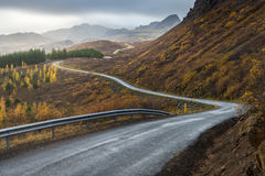 The road line perspective in Autumn season Stock Images