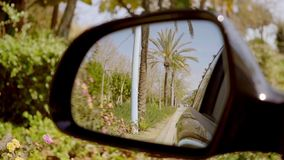 Road lined with tropical palm trees. Reflected in the side view mirror of a motor car stock footage