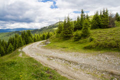 Road in the Lotru mountains Royalty Free Stock Image