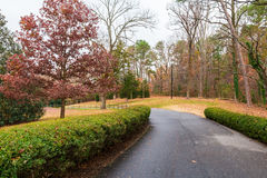 Road in Lullwater Park, Atlanta, USA stock photography