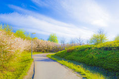 Road in Lund Stock Photography