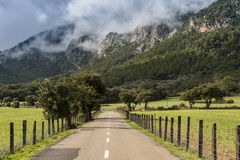 Road in Majorca Royalty Free Stock Image