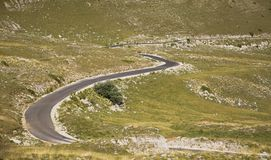 Road with many curves Royalty Free Stock Image