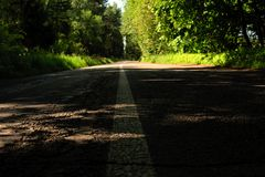 Road marking on the asphalt in the shade. In the forest Stock Photo