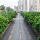 Road with a marking. The track on the background of the city. And trees stock image