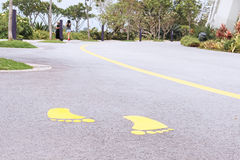 Road markings on asphalt in a beautiful park Royalty Free Stock Images