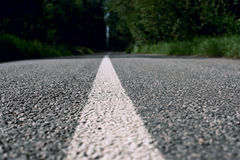 Road markings on asphalt in the forest. Close Royalty Free Stock Image