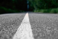 Road markings on the asphalt in the forest. Close Royalty Free Stock Photos