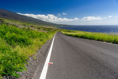 Road in Maui Royalty Free Stock Photo